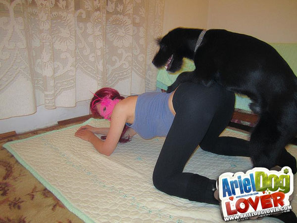 Dogs love yoga pants as well